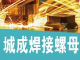 邯郸市永年区城成紧固件有限公司